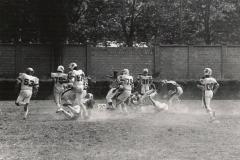 Rams_tauri_1982_006